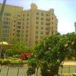 Apartments along the Jumeira palm beach