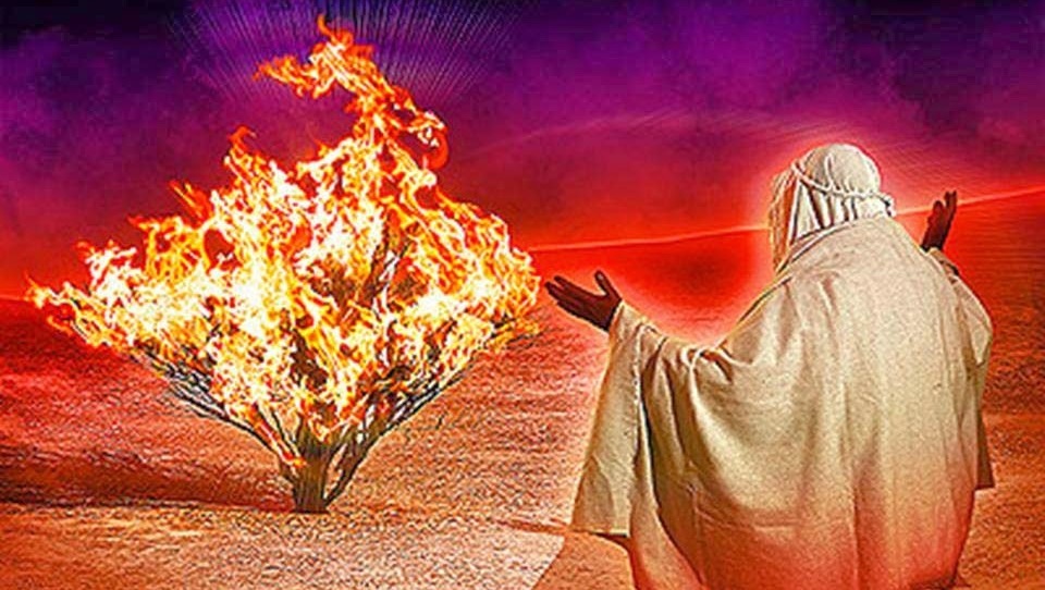 Chronicles Of Yhwh 26 The Burning Bush Random Thoughts