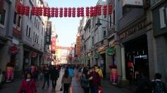 pedestrian shopping street