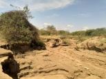 deep erosion gulley. should be addressed